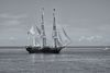 The majestic Charles W. Morgan tall ship out for a sail (B&W)
