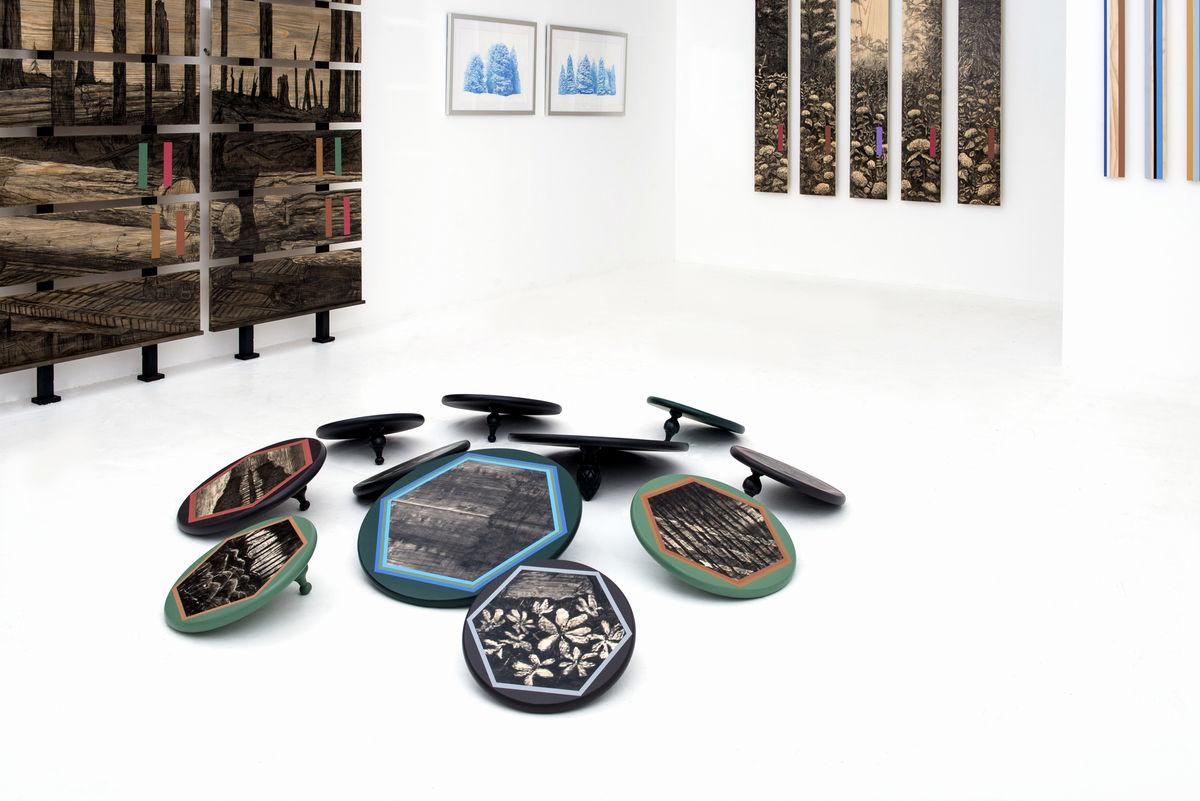 DromomaniaX2, Stacey Cushner & Liselott Johnsson, Exhibition View