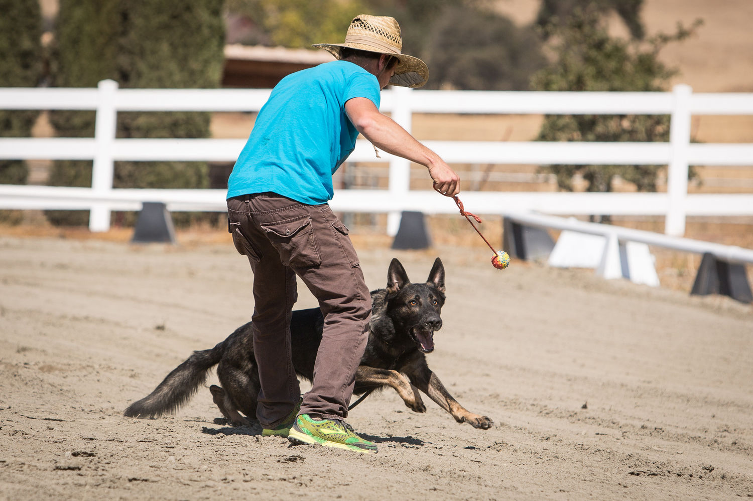 Forrest Micke Training a Young German Shepherd