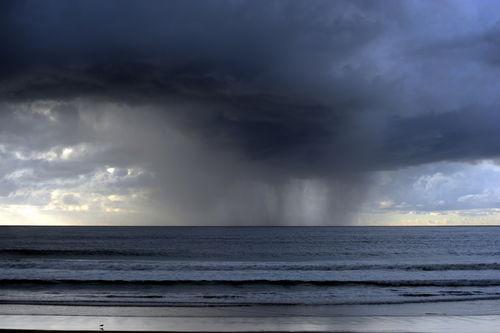 Springtime Downpour