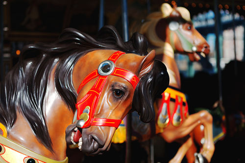 Horses from Jane's Carousel