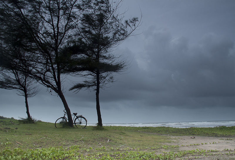 The Konkan Coast